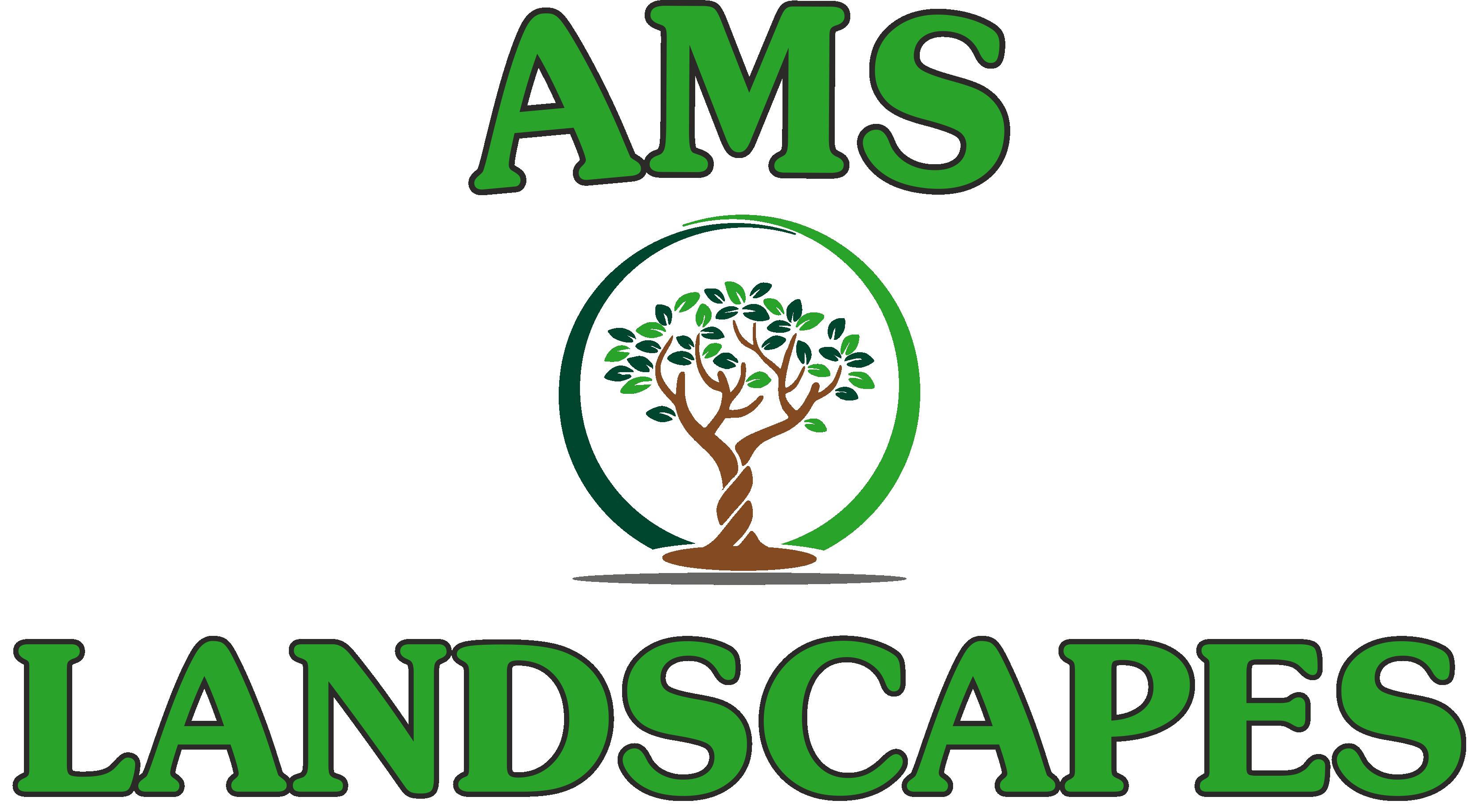 AMS Landscapes